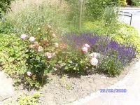 Gartenanlage_und_Pflanzungen_04