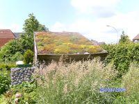 Gartenanlage_und_Pflanzungen_05