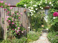 Gartenanlage_und_Pflanzungen_07