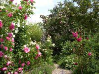 Gartenanlage_und_Pflanzungen_08