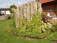 Gartenanlage_und_Pflanzungen_11